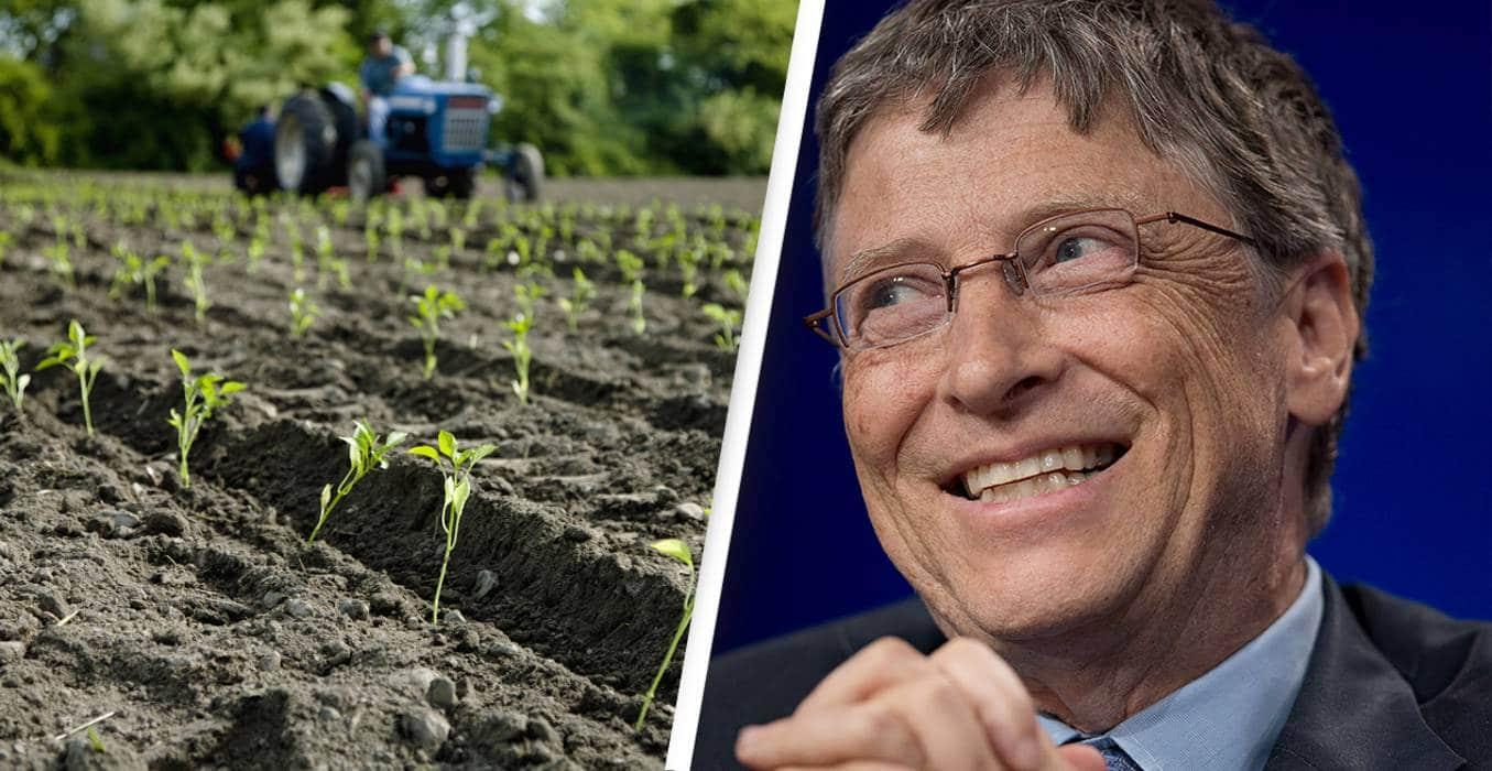 Die Zukunft der Landwirtschaft nach Ansicht von Bill Gates. Neue Erkenntnisse