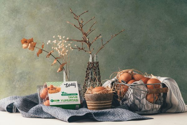 invest4land-free-range-eggs-entelkoy