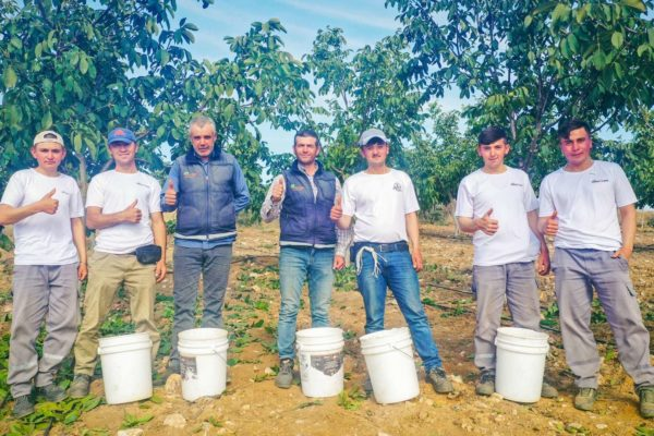 Invest4Land Agriculture Real Estate Investment Farmland Walnut Almond Agrobusiness Harvest Farmer1